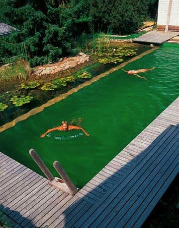 natural swimming pools green home landscape source. Black Bedroom Furniture Sets. Home Design Ideas